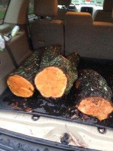Salvaged Cherry Logs